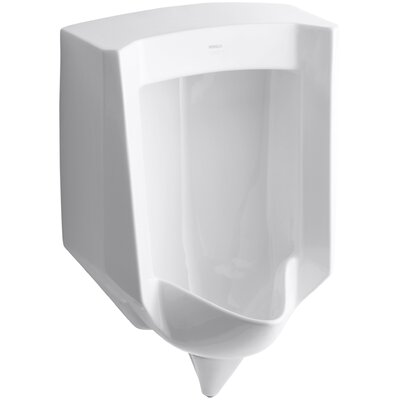 Stanwell Blow-Out Wall-Mount 1 GPF Urinal with Rear Spud Finish: White