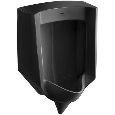 Stanwell Blow-Out Wall-Mount 1 GPF Urinal with Rear Spud Finish: Black Black
