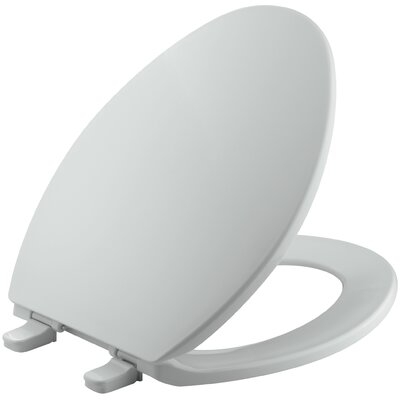 Brevia with Quick-Release Hinges Elongated Toilet Seat Finish: Ice Grey