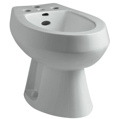San Tropez Vertical Spray Bidet with 4 Faucet Holes Finish: Ice grey
