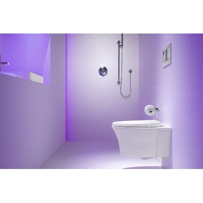 "Veil One-Piece Elongated Dual-Flush Wall-Hung Toilet with Reveal Quiet-Close Seat and 2""X6"" In-Wall Tank and Carrier System"