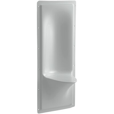Echelon Shower Seat Finish: Ice Grey