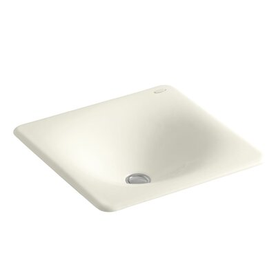 Iron Tones Self Rimming Bathroom Sink Sink Finish: Biscuit