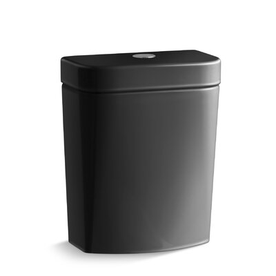 Persuade Circ Dual-Flush Tank Finish: Black Black