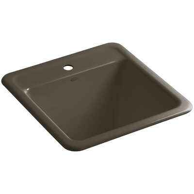 Park Falls Top-Mount/Undermount Utility Sink with Single Faucet Hole Finish: Suede