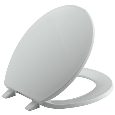 Brevia with Quick-Release Hinges Round-Front Toilet Seat Finish: Ice Grey