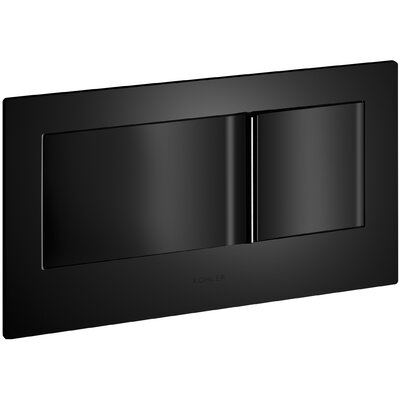 Flush Actuator Plate In-Wall Tank and Carrier System Finish: Black Black
