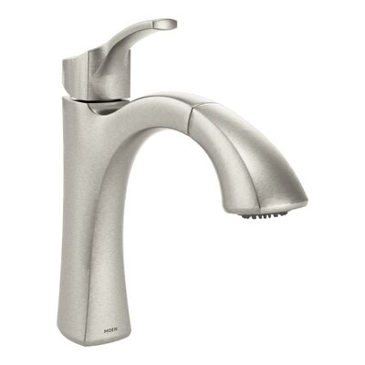 Voss Single Handle Kitchen Faucet Finish: Spot Resist Stainless
