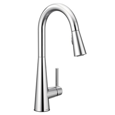 Sleek Pull Down Single Handle Kitchen Faucet Finish: Chrome