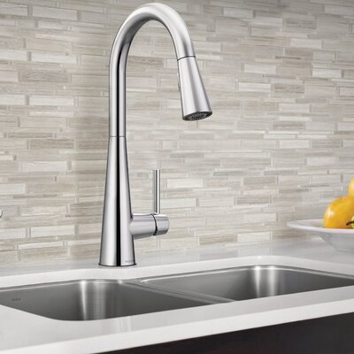 Sleek Single Handle Pull Down Standard Kitchen Faucet Finish: Chrome