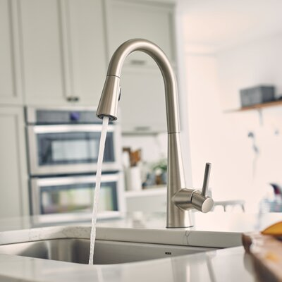 Sleek Single Handle Pull Down Standard Kitchen Faucet Finish: Spot Resist Stainless