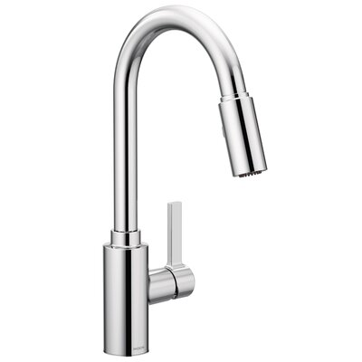 Genta Single Handle Pulldown Kitchen Faucet Finish: Chrome