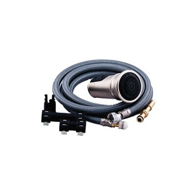 Replacement Wand and Hose Kit Finish: Stainless