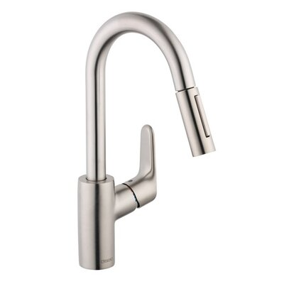 Focus Single Handle Kitchen Faucet Finish: Steel Optik