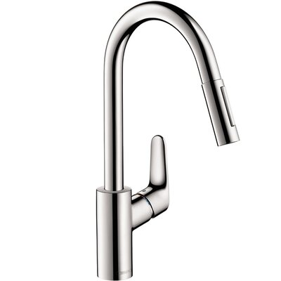 Focus Single Handle Kitchen Faucet Finish: Chrome