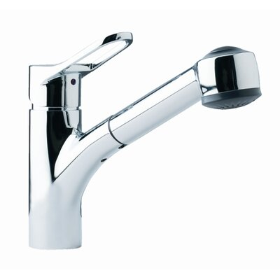 Single Handle Single Hole Kitchen Faucet with Pull Out Spray Finish: Chrome