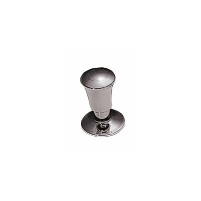 Pop Up Kitchen Sink Drain Finish: Satin Nickel