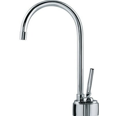 Hot Water Dispenser with Filter and Swivel Spout Finish: Chrome