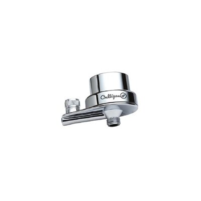 In-Line Shower Filter with Level 2 Extra Filtration Finish: Polished Chrome