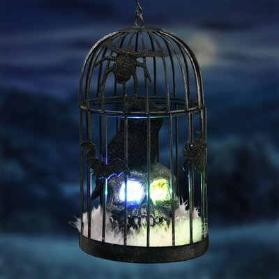 Caged Owl on Skull Figurine with Colour Changing LED's and Timer THDA5060 42691862