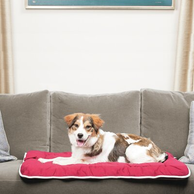 Repelz-It Sleeper Dog Pillow Color: Berry, Size: Extra Large (42 L x 28 W)