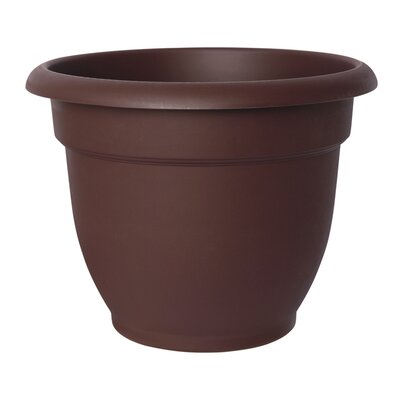 Resin Pot Planter Color: Chocolate 20-56306CH