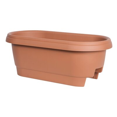 Oval Rail Planter Color: Clay 477241-1001