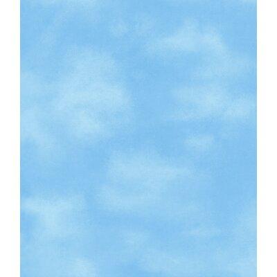 """Room Mates Room Mates Deco 33' x 20.5"""" Clouds Wallpaper DK5869"""