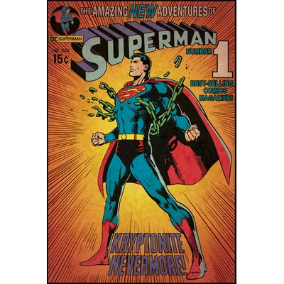 Room Mates Deco Superman Kryptonite Wall Mural RMK1633SLG
