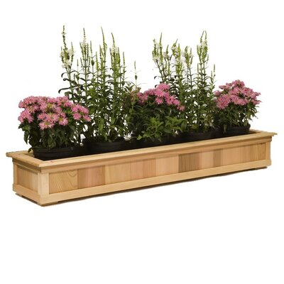Rectangular Window Box Planter Size: 7.5