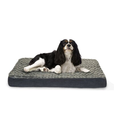 Ultra Plush Deluxe Ortho Pet Bed Size: Jumbo  (44 H x 35 W), Color: Gray