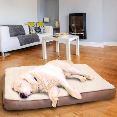 Lydia Pet Bed Size: Jumbo (44 H x 35 W), Color: Clay