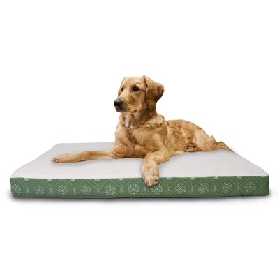 Boris Paw Decor Memory Foam Dog Bed Color: Jade Green, Size: Small (20 L x 15 W)
