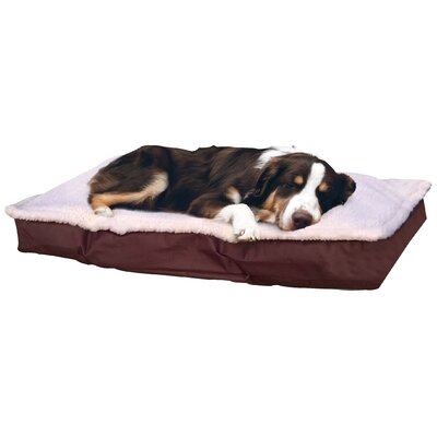 Blossom Deluxe Outdoor Pillow Dog Bed Size: Large (3 H x 27 W), Color: Espresso
