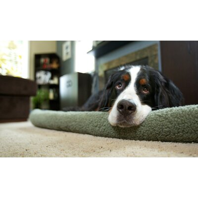 Furhaven Pet NAP Bolster Pet Bed Color: Sage, Size: 18 L x 24 W