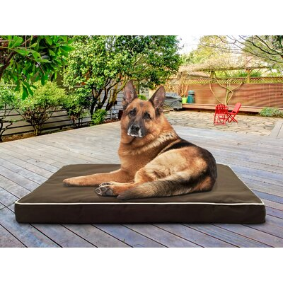 Billy Deluxe Ortho Mat Pet Bed Size: Small (20 L x 15 W), Color: Espresso