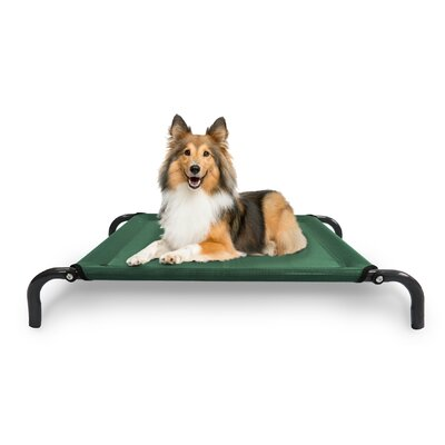 Elevated Pet Dog Bed/Cot Color: Forest, Size: Small (35.5 L x 25.25 W)