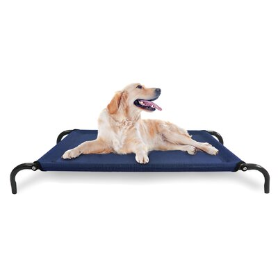 Elevated Pet Dog Bed/Cot Color: Deep Blue, Size: Small (35.5