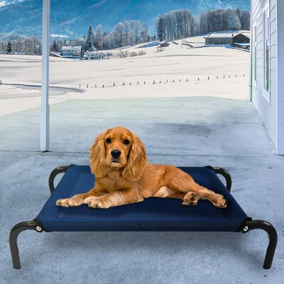 Elevated Pet Dog Bed/Cot Color: Deep Blue, Size: Large (52 L x 36.25 W)