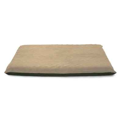Clifton Suede Top Orthopedic Dog Mat Color: Clay, Size: Large (42