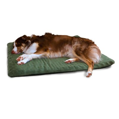 Terry Top Orthopedic Dog Mat Color: Forest
