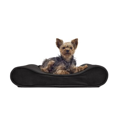 Microvelvet Luxe Orthopedic Dog Bed Size: Small (21 W x 14 D), Color: Espresso