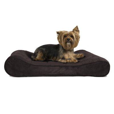 Carmela Microvelvet Luxe Orthopedic Dog Bed Size: Medium (30 W x 20 D), Color: Espresso