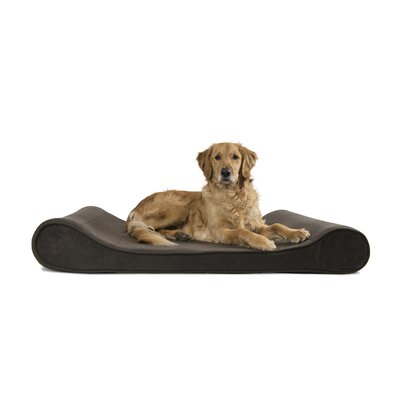 Microvelvet Luxe Orthopedic Dog Bed Size: Jumbo (45 W x 30 D), Color: Espresso