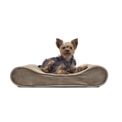 Carmela Microvelvet Luxe Orthopedic Dog Bed Size: Small (21 W x 14 D), Color: Gray