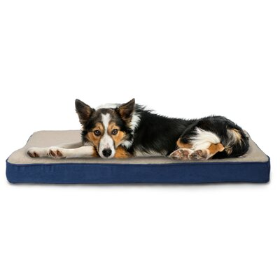 Nap Sherpa/Suede Memory Foam Dog Mat Size: Medium (30 L x 20 W), Color: Navy