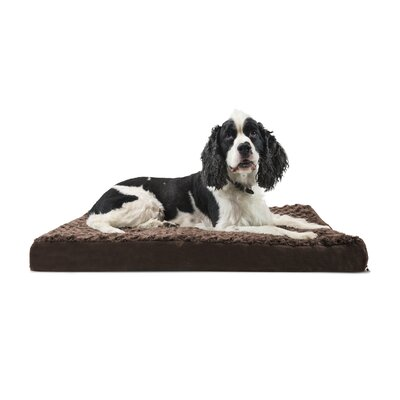 Betsy Ultra Plush Deluxe Ortho Pet Bed Size: Large (36 W x 27 D x 3.5 H), Color: Chocolate