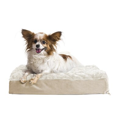 Ultra Plush Deluxe Ortho Pet Bed Size: Small (20 W x 15 D x 3.5 H), Color: Cream