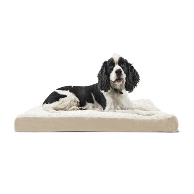 Ultra Plush Deluxe Ortho Pet Bed Size: Small (20 W x 15 D x 3.5 H), Color: Gray