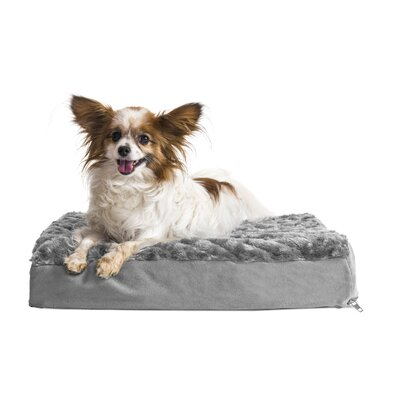 Betsy Ultra Plush Deluxe Ortho Pet Bed Size: Medium (30 W x 20 D x 3.5 H), Color: Gray